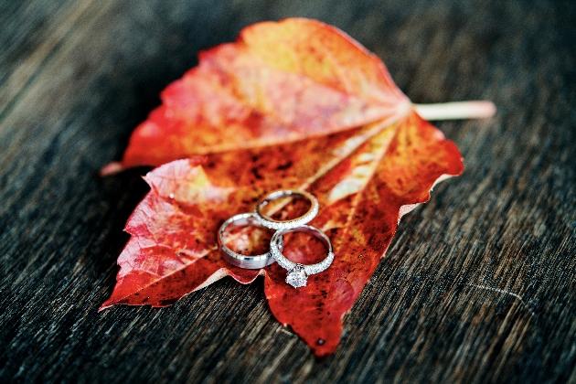 Wedding rings sit on autumn leaf
